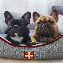 Lola&Pepe