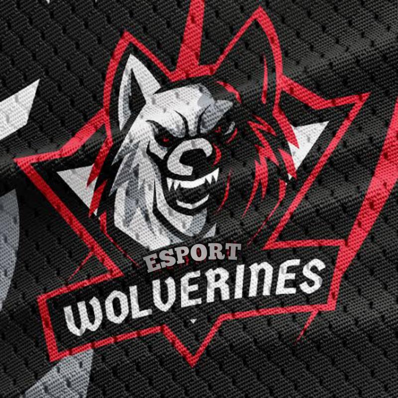 Wolverines Esport