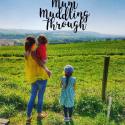 Sarah Mummuddlingthrough