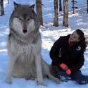 Animals Rare Videos Not clickbait