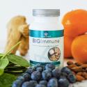 BIG Immune Supplements