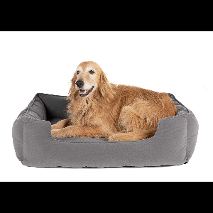 Large Dog Beds Campaign