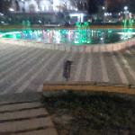 Luan Daci